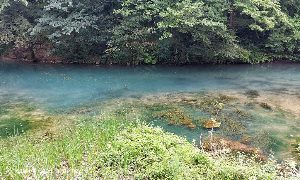озеро Псырцха фото
