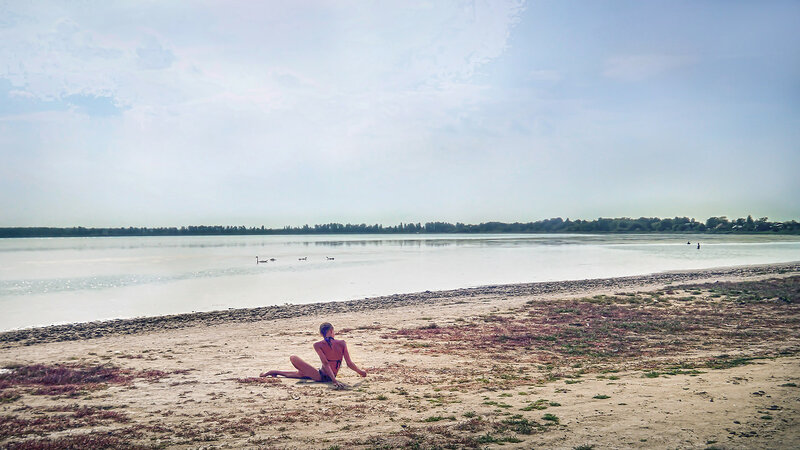 Лебеди на озере Горьком