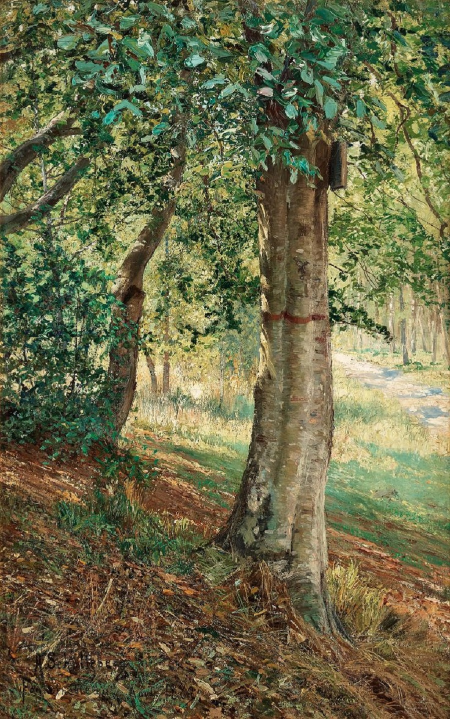 Fontainebleau forest in summer light , 1889.