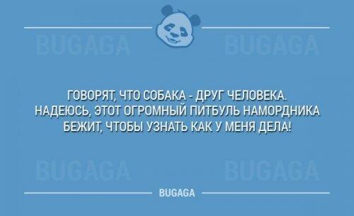 1417559756_nadpisi-16.jpg