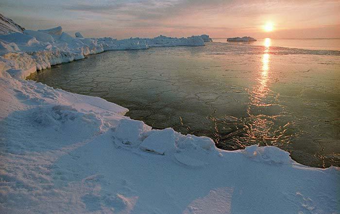 развития Арктической зоны России