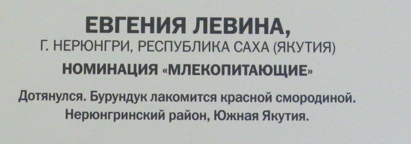 https://img-fotki.yandex.ru/get/764457/140132613.6a6/0_2410ce_36797678_XL.jpg