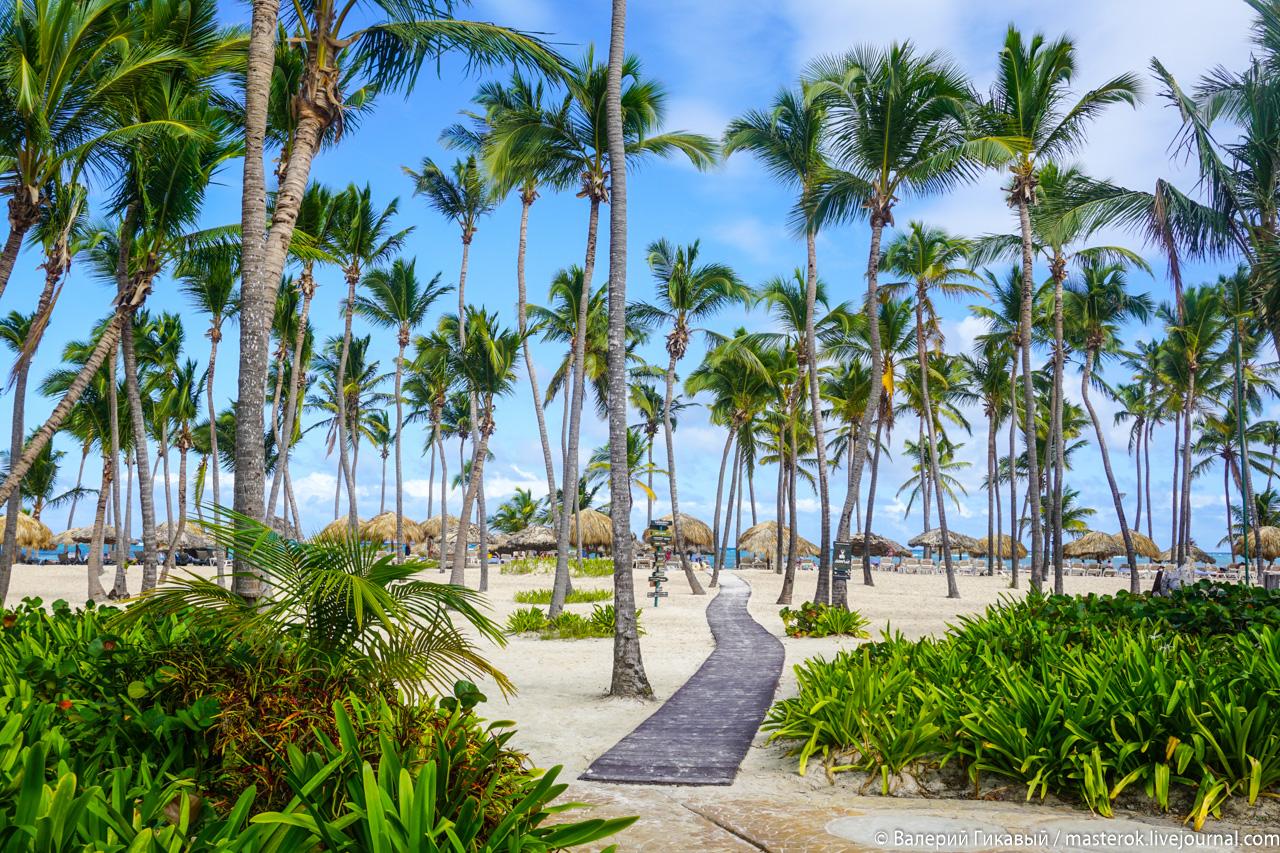 Как сократить дорогу до Доминиканы