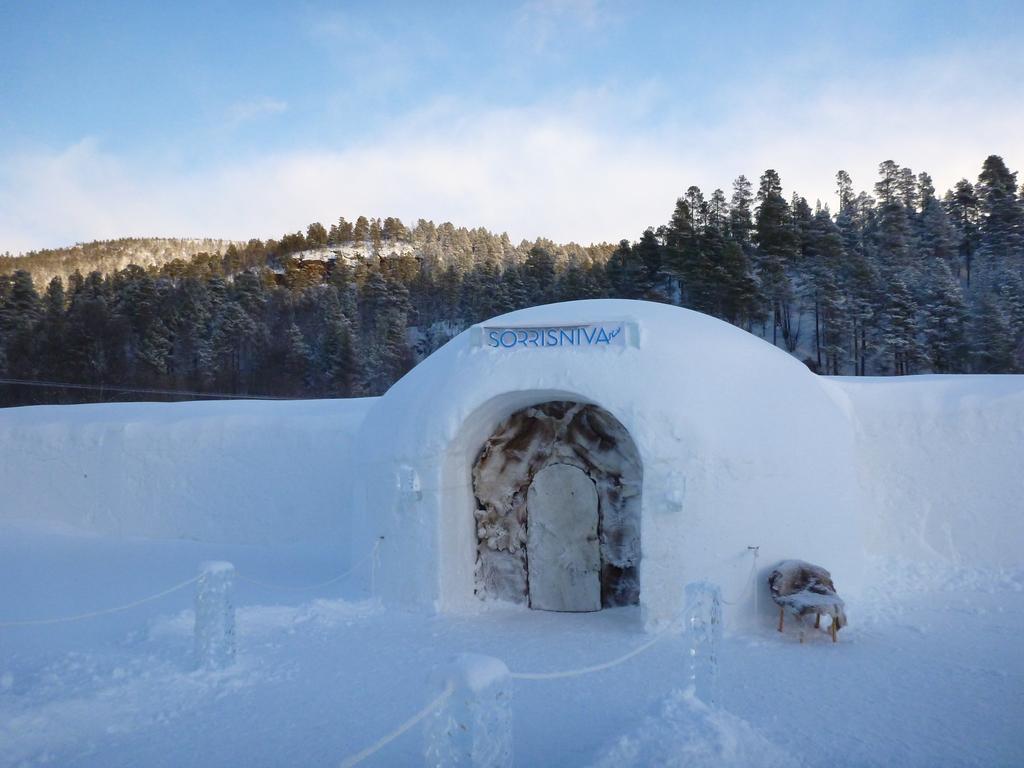 Остановиться в созданном полностью изо льда отеле, который заново отстраивают каждый год – это уже с