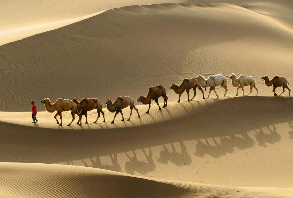 7. Нефтяники. (Фото Reuters):