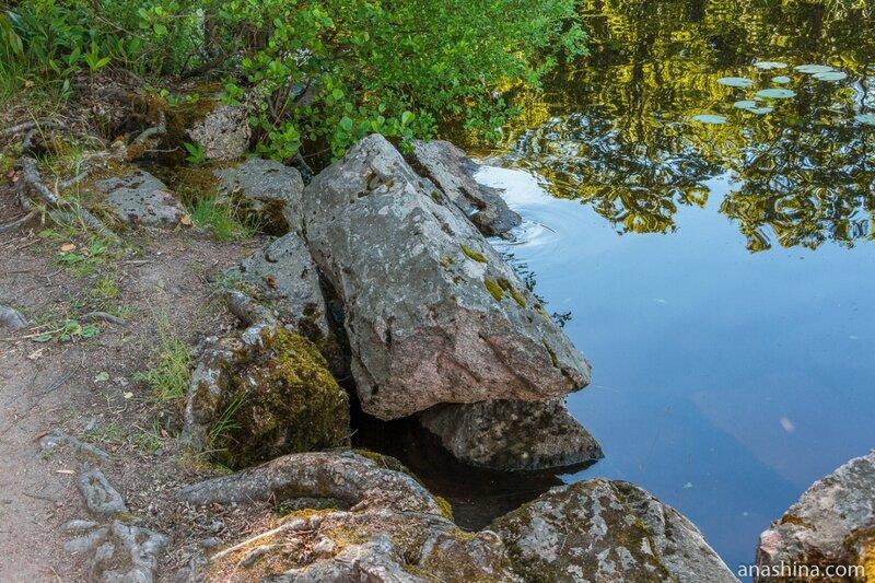 Камни, парк Монрепо, Выборг