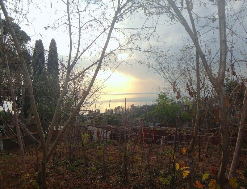 В Новом Афоне, Черноморское побережье Абхазии, 30.12.17 (21).JPG