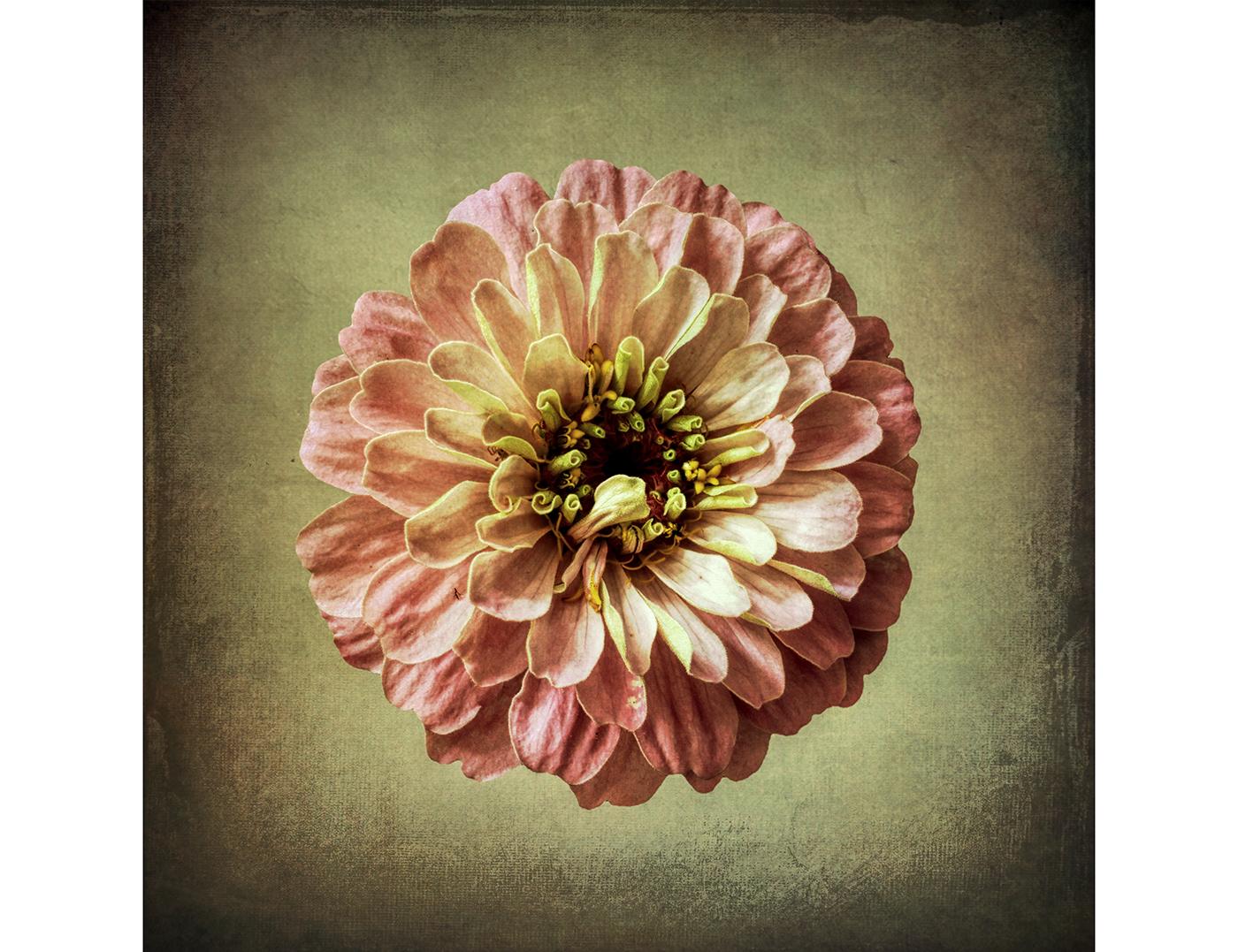Eye Poetry / фото Bettina Güber