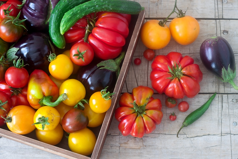 Fresh vegetables on a wooden surface. Tomatoes, peppers, cucumbers and eggplants. Rustic style, selective focus.