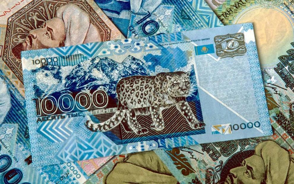 13. Каждая деноминация южноафриканского рэнда демонстрирует животное из « Большой Африканской п