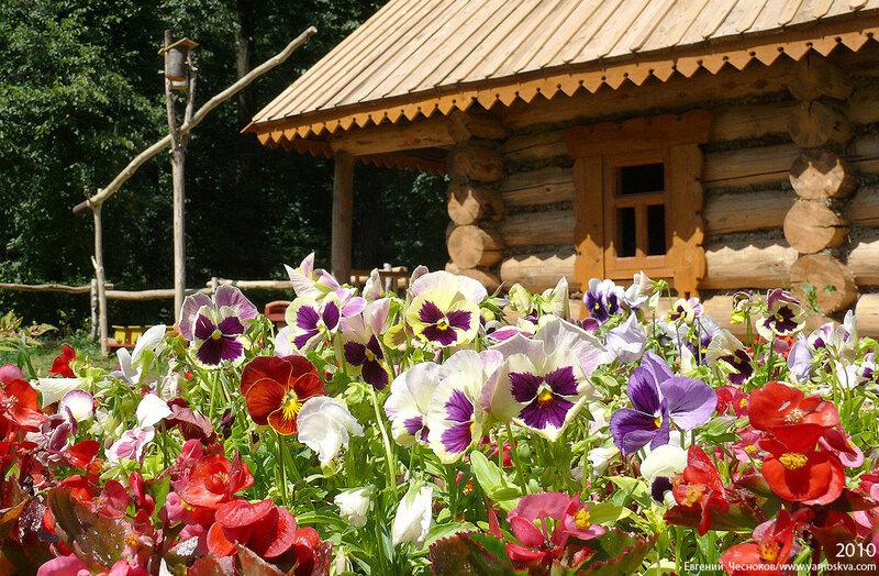 07. Кузьминки. Фестиваль цветников. 05.07.10.11...jpg