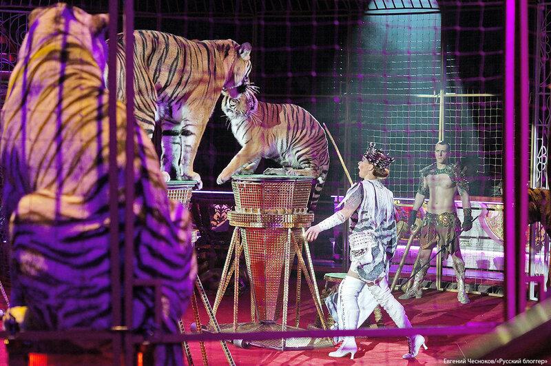 Цирк. Монте-Карло. 22.02.18.68. Людмила Суркова..jpg