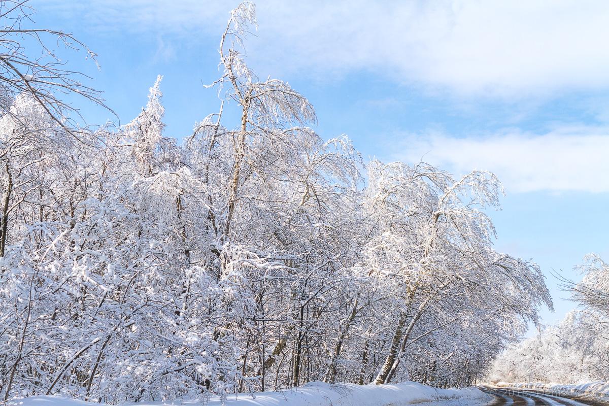 Зима кумысная поляна фото 7