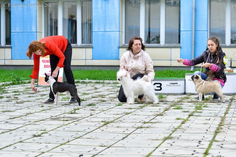 https://img-fotki.yandex.ru/get/765007/5306260.f3/0_19815e_e392527d_XL.jpg
