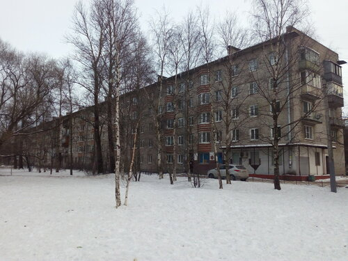 Школьная ул. 8