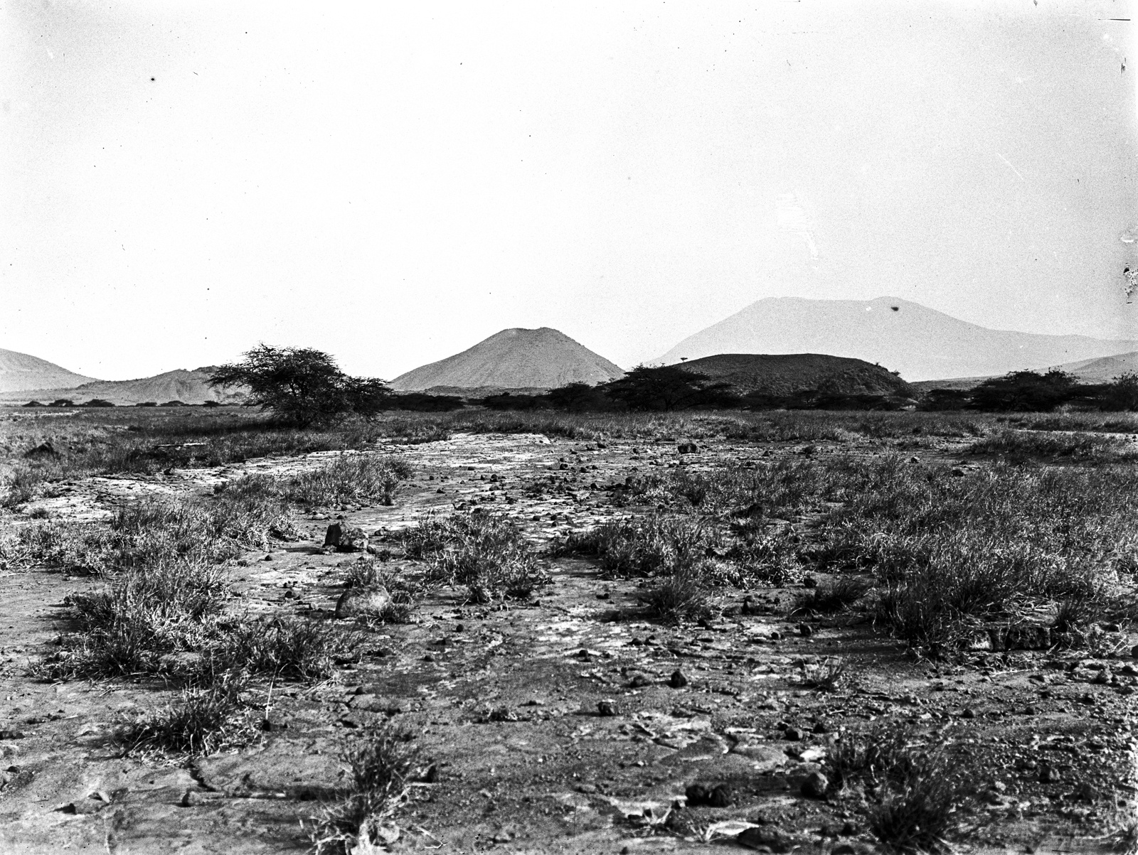 12. Саванна у вулкана Гелей