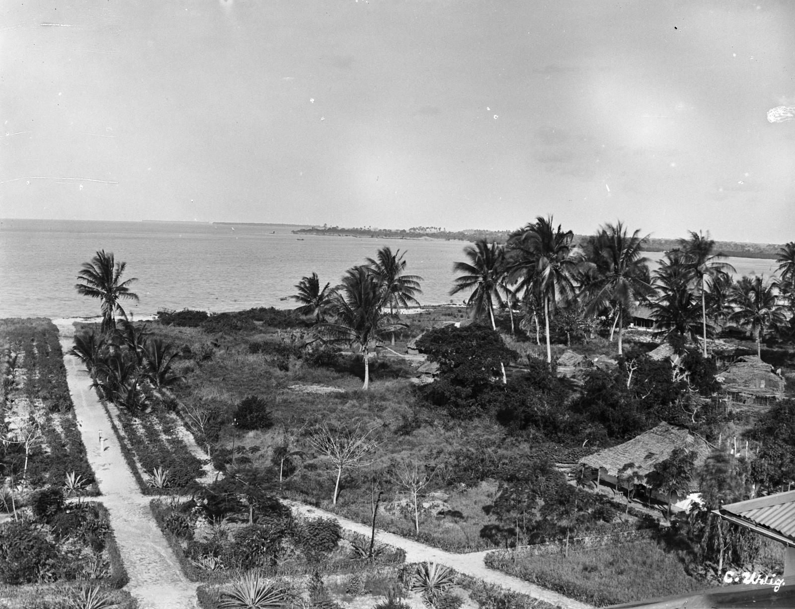 133. Береговая линия в Дар-эс-Саламе