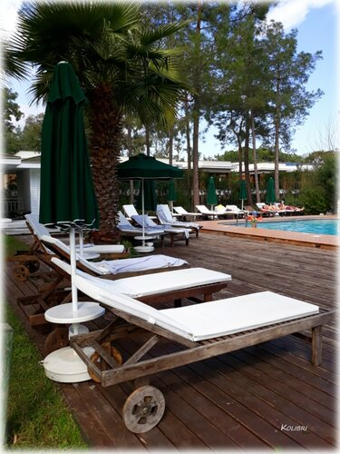 Paloma Foresta Resort & Spa 5* (Кемер)