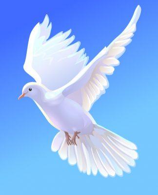 21 сентября Международный день мира. Голубь в полете открытки фото рисунки картинки поздравления