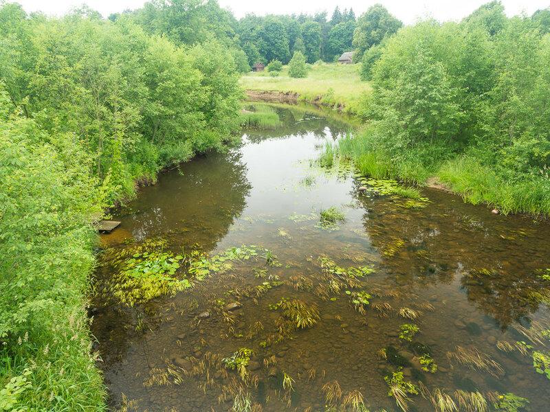 Река Зарежанка (Голбица).