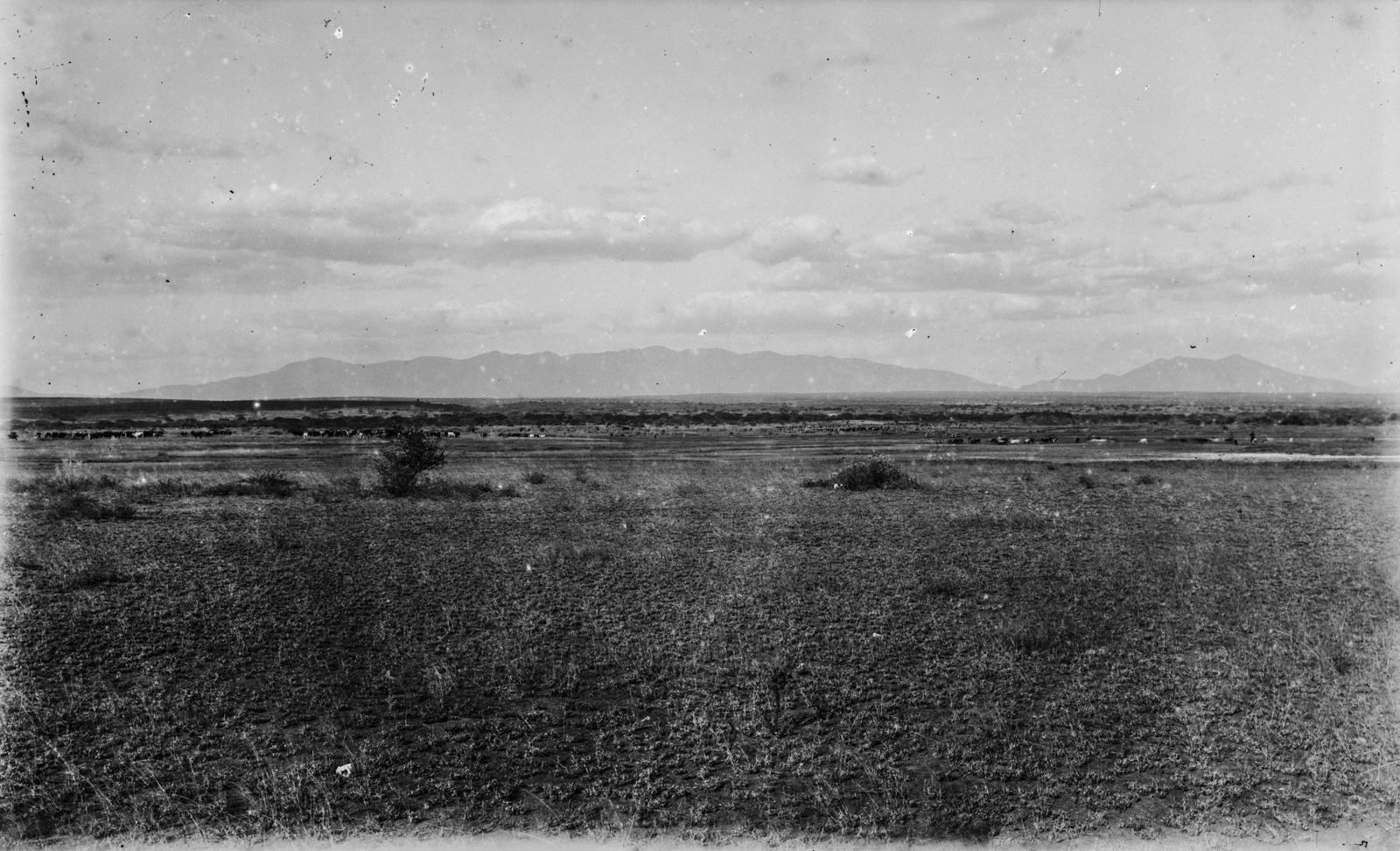 356. Степной пейзаж в районе Пангани. На заднем плане горы Усамбара
