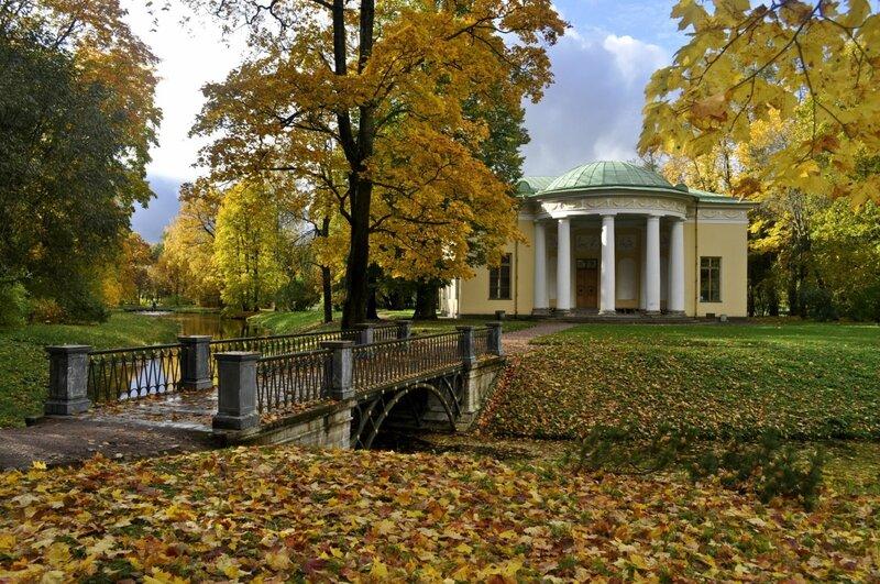 Осень в парке!