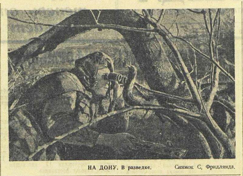 Красная звезда, 16 августа 1942 года