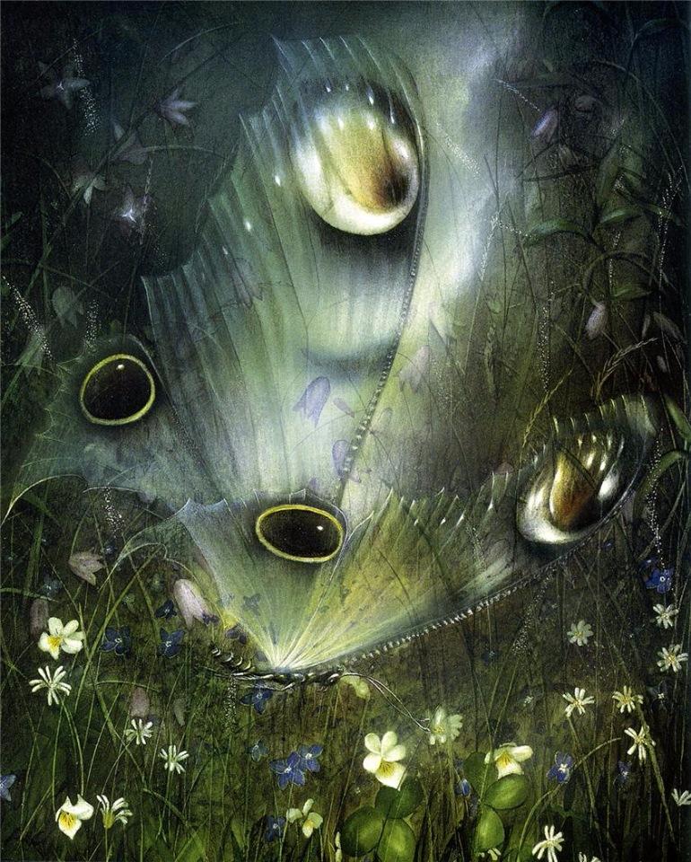 Бабочки / художник Friedrich Hechelmann