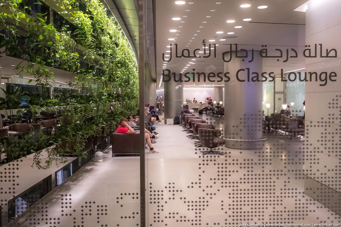 Бизнес-зал Qatar Airways может вместить одновременно до 1000 гостей! Я же в этот раз летел в экономк