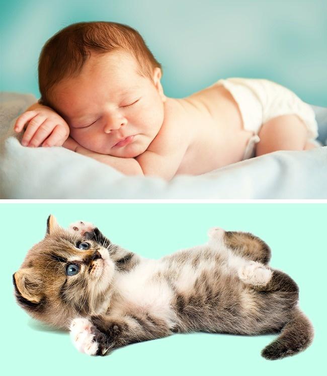 Почему младенцы такие пухлые иеще 4особенности, которые есть учеловека при рождении (7 фото)