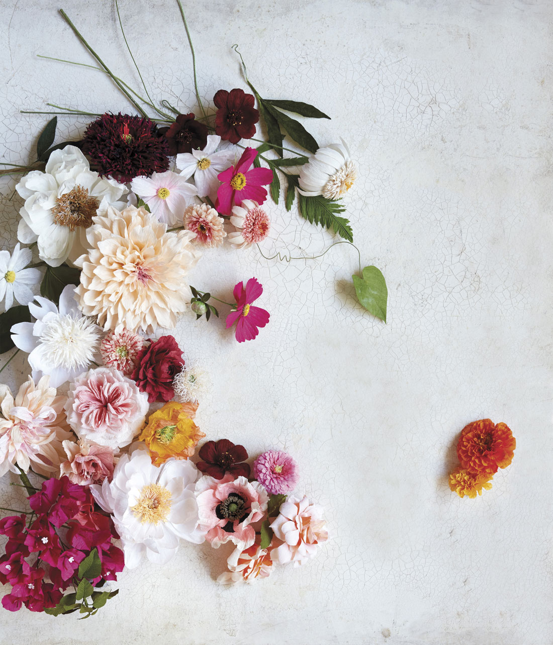 Tiffanie Turner's Debut Book Shows How To Create Her Masterful Paper Flowers
