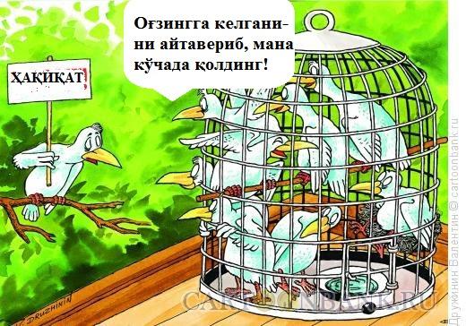 svoboda.jpg