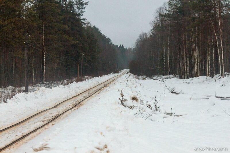 Белоручейская узкоколейная железная дорога, Вологодская область