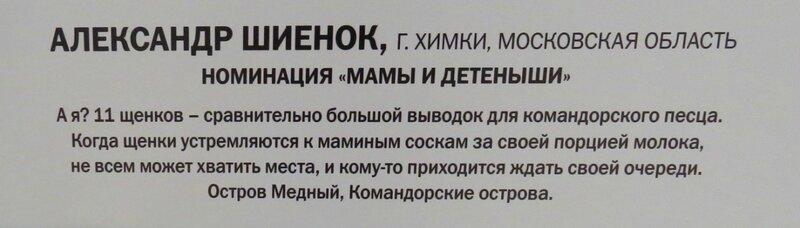 https://img-fotki.yandex.ru/get/765779/140132613.6a4/0_24092a_6b28fad5_XL.jpg