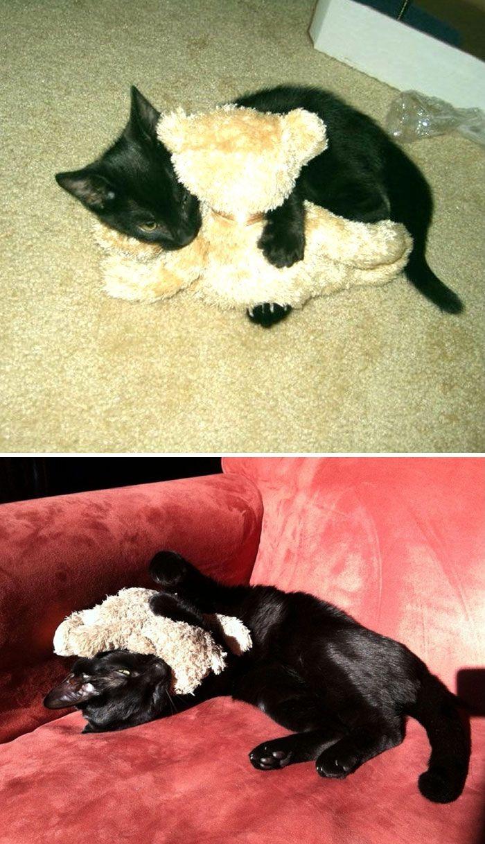 11. Четыре года спустя он так же любит играть со своим плюшевым медвежонком.
