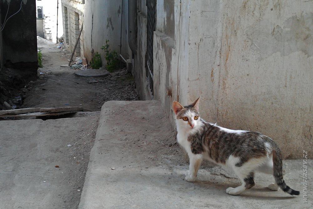 Baku_Old_Town 24.JPG