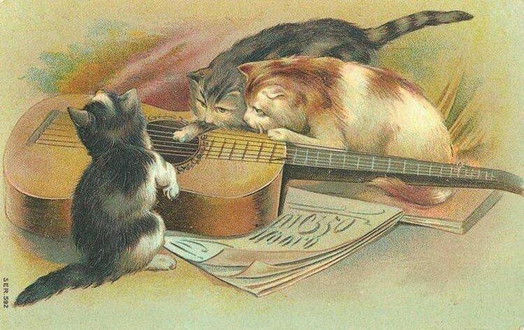 Картинки профилактикой, старинные открытки о кошках