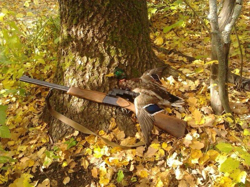 Осенняя охота