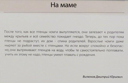 https://img-fotki.yandex.ru/get/766539/140132613.6ca/0_24430d_d3bdfa4_L.jpg