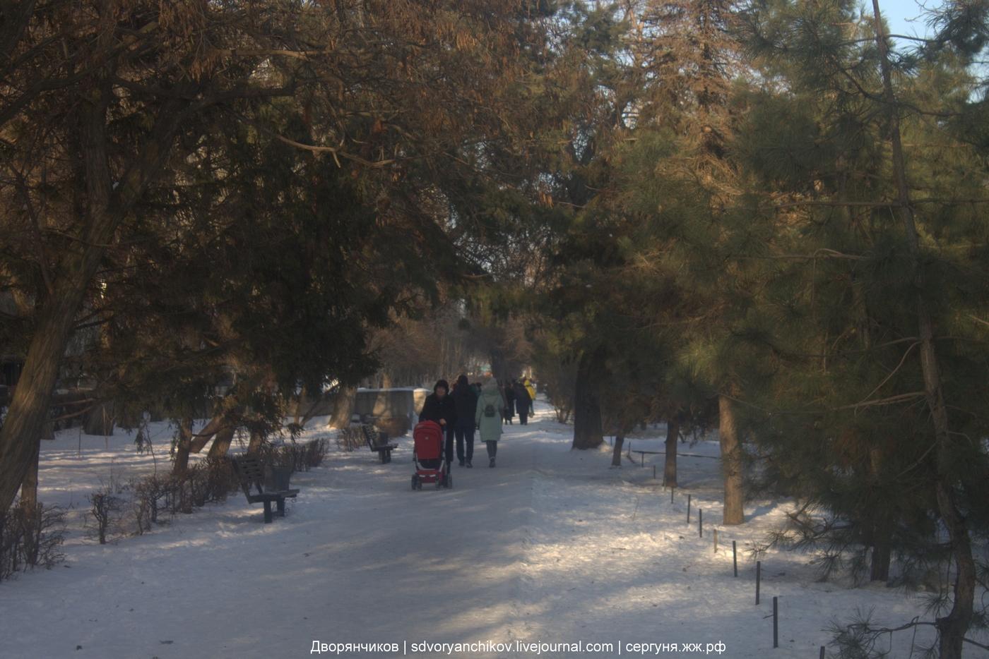 Волгоград - 2 февраля 2018 - ул Чуйкова