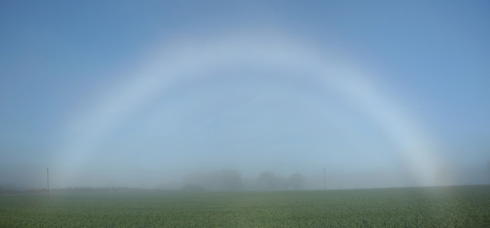Для возникновения туманной радуги требуются строгие условия. Капельки воды, из которой образован тум