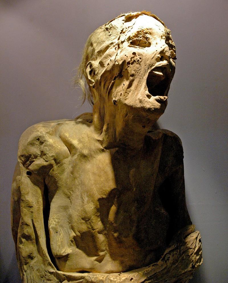 13 самых жутких мумий мира (13 фото)