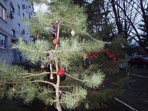 Мотив Новогоднего праздника (28).JPG