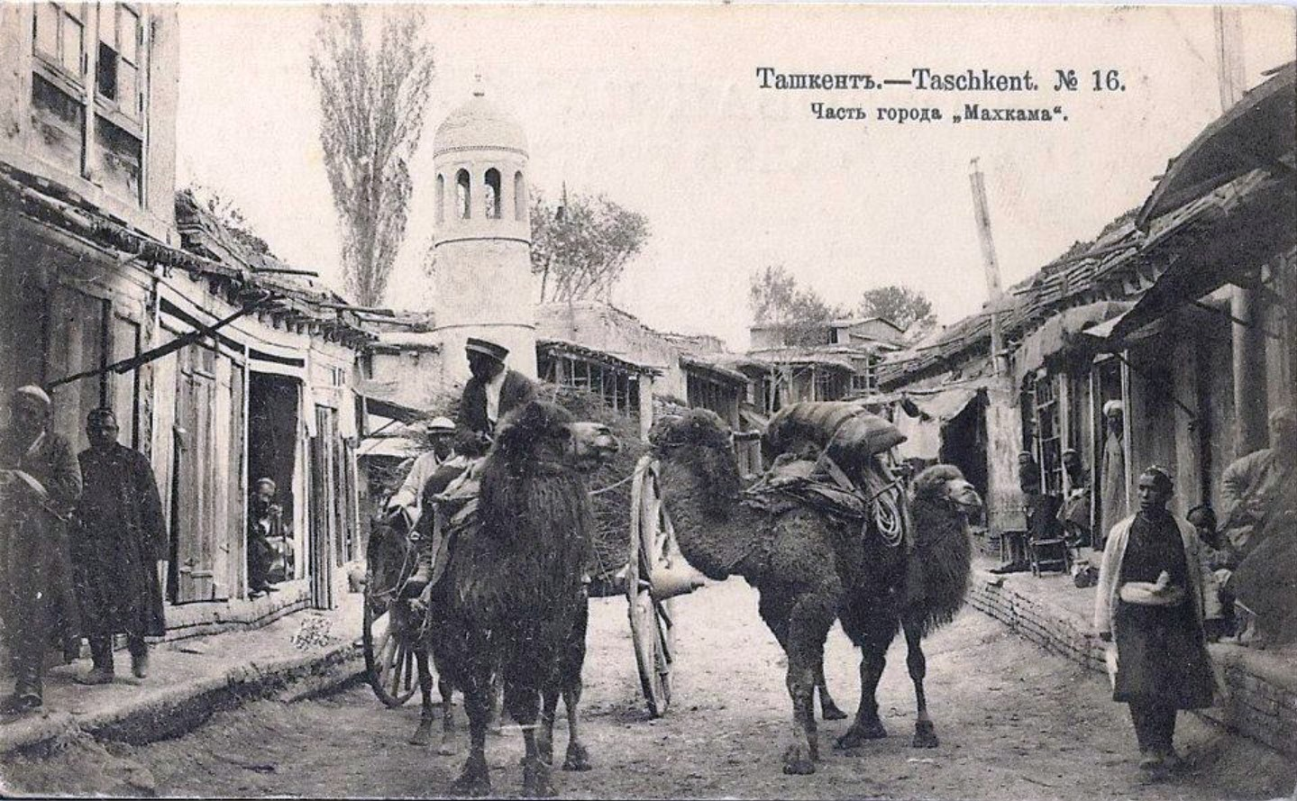 Часть города Махкама