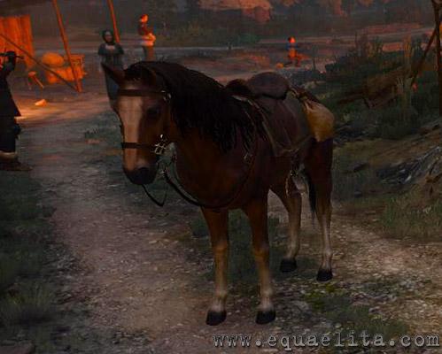 Ведьмак 3 - лошадь