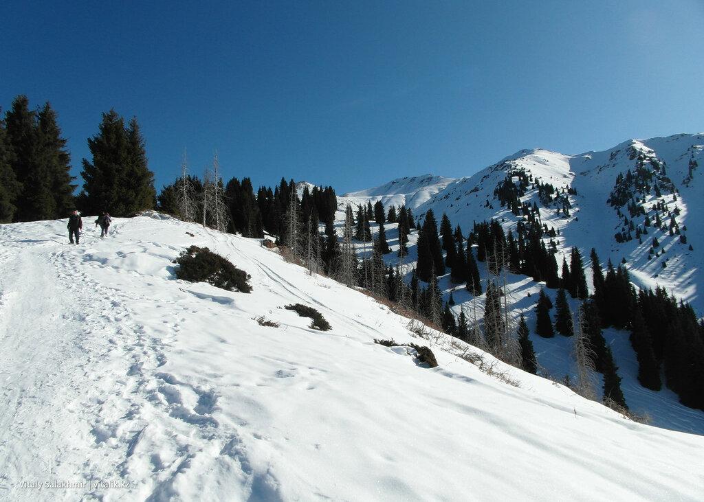 Пешком в горы Алматы.