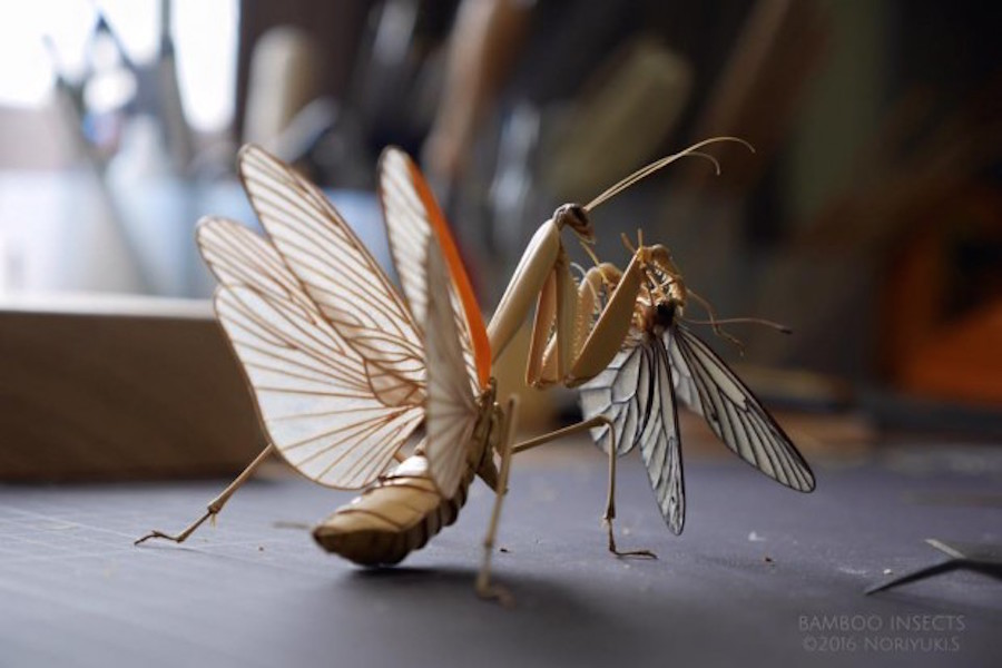 Realistic Bamboo Insects (13 pics)