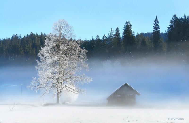 у леса на опушке жила Зима в избушке