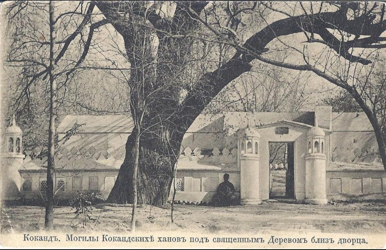 Могилы кокандских ханов под священным деревом близ дворца