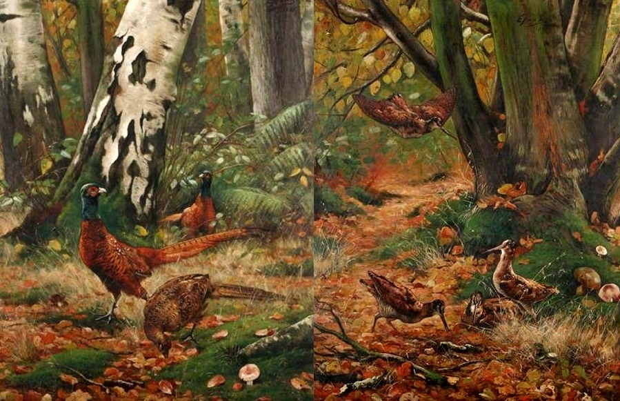 A Pair: Pheasants and woodcocks in the forrest , 1881